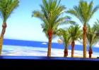 Фото туриста. Море, пальмы,солнце...удовольствие...
