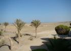 Фото туриста. Вид на пустыню из номера 213