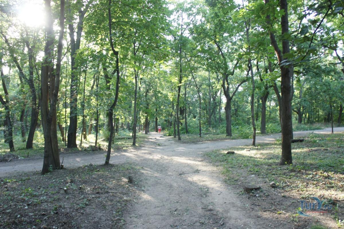 алексеевский парк одесса фото
