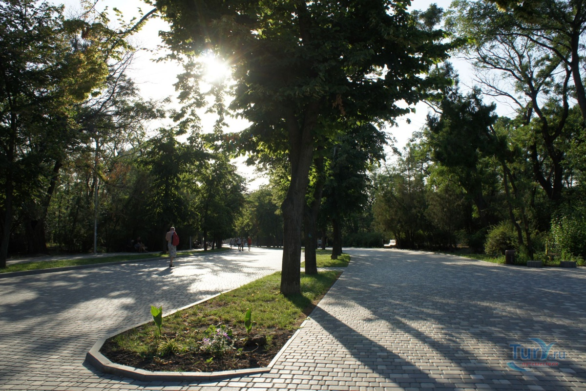 стремительное алексеевский парк одесса фото вам понравились цитаты