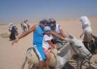 Фото туриста. катание на осликах, верблюдах, лошадях