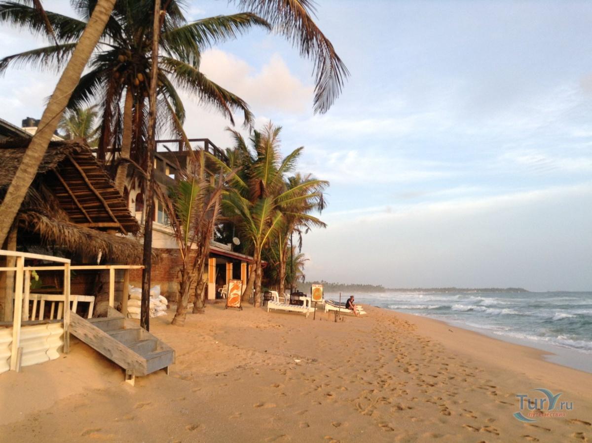 фотографии хиккадува пляж отзывы и фото получается