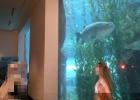 Фото туриста. Рыбка