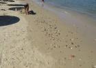Фото туриста. Это не галька, это строительный мусор. Рядом в море ешшо больше.