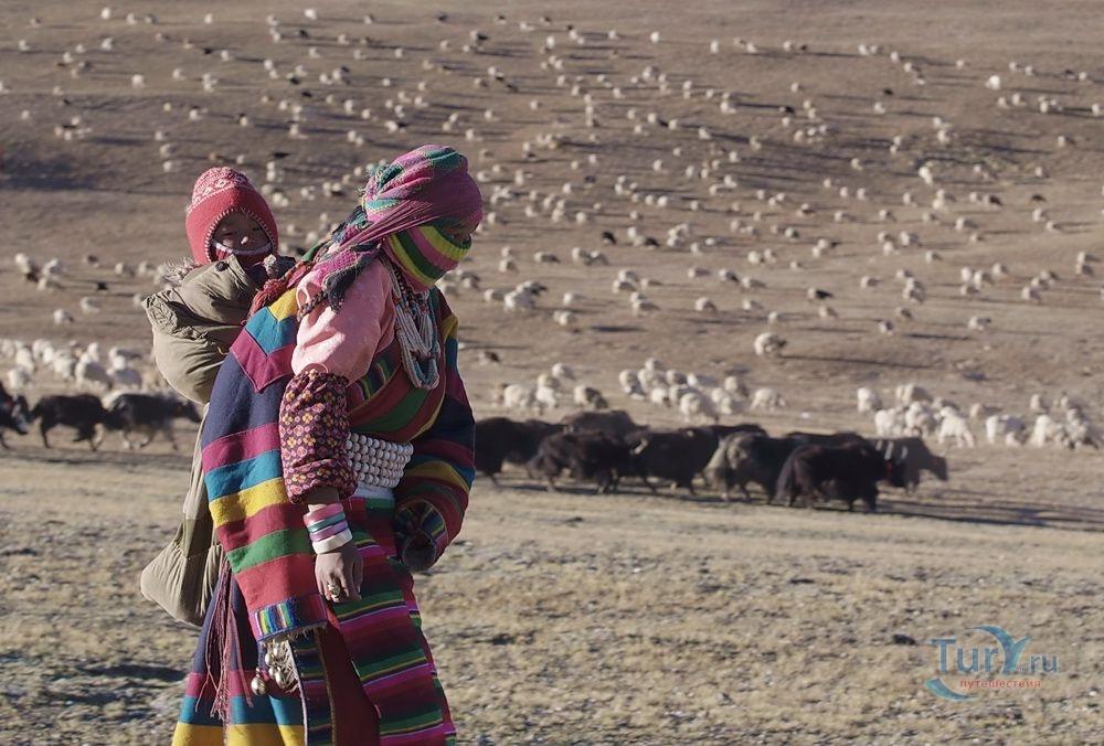 Тибет картинки для туриста