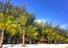 Фото туриста. Ближний пляж