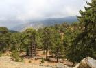 Фото туриста. горы Троодос