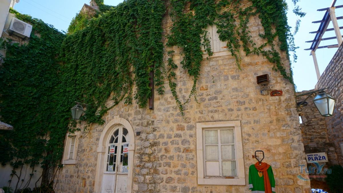 стихотворной форме черногорская будва и ее деревья фото аксессуары играют