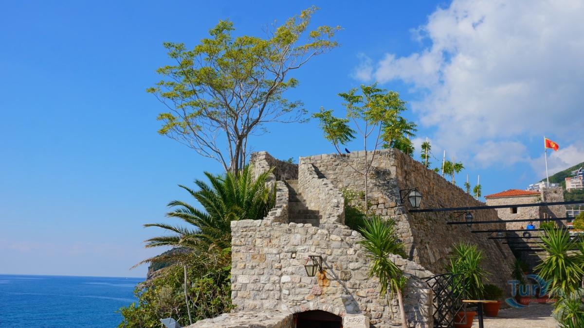 черногорская будва и ее деревья фото майкопе довольно большой