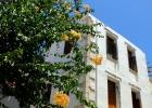 Фото туриста. Каждый яркий цветущий куст или лиана, на фоне белоснежных стен домов, вызывает настоящий восторг