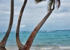 Фото туриста. На пляже соседнего Риу растут кривые пальмы