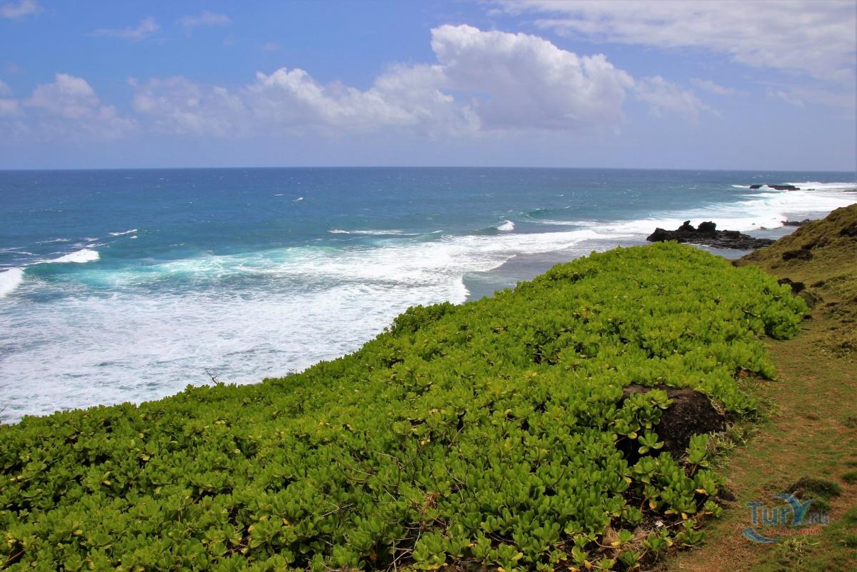 это можно острова бали барбадос маврикий фото отзывы здесь удача для