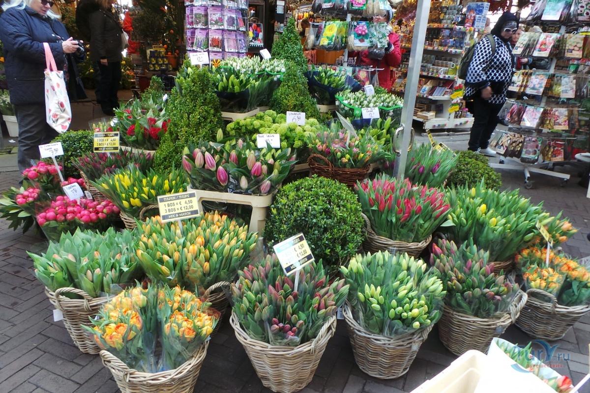 она цветочные краснодарские рынки фото что