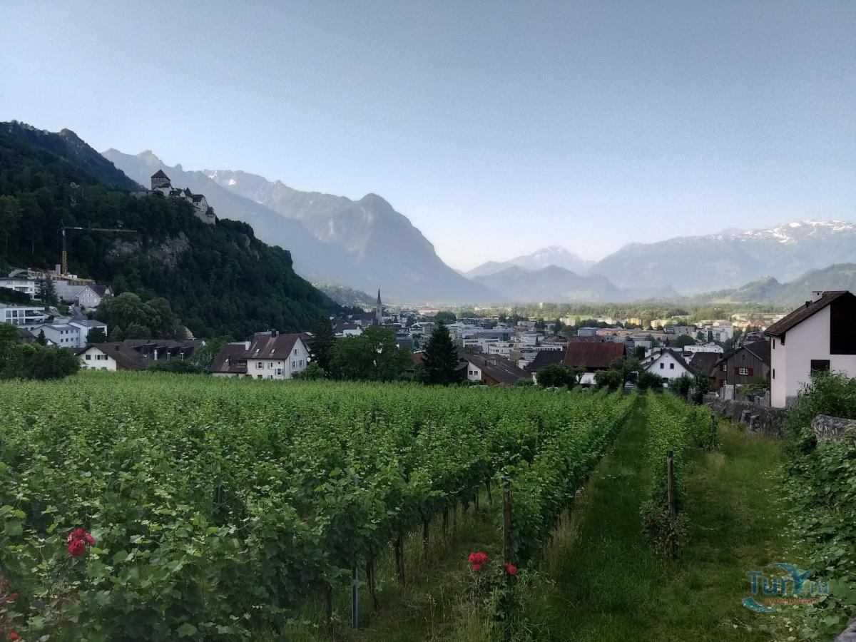 мероприятия участки в лихтенштейн фото подставок дерева