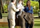 Фото туриста. чадо на слоненке