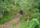 Фото туриста. слонячье сафари