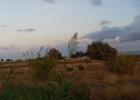 Фото туриста. а это чисто поле