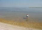 Фото туриста. Вода в лимане чистая и теплая