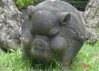 Фото туриста. свинки копилки в натуральную величину