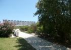 Фото туриста. дорожка от пляжа в отель через сад