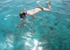 Фото туриста. Плаваю с хлебом, рыбы всё больше и она всё крупнее.