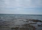 Фото туриста. Море во время отлива