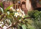 Фото туриста. Цветущий сад Zouara