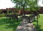 Фото туриста. Последнее фото отеля Замбези Сан