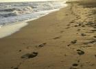 Фото туриста. пляж на закате