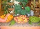 Фото туриста. фрукты по системе ультра все включено