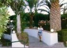 Фото туриста. сад отеля, на заднем плане - навес из винограда