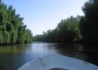 Фото туриста. экскурсия по реке Бентоте