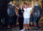 Фото туриста. слоники