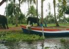 Фото туриста. ланкийский пейзаж