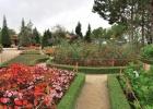 Фото туриста. г. Далат-город цветов