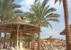 Фото туриста. пляж, лежаки, пальмы