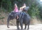 Фото туриста. На слонике