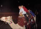 Фото туриста. на верблюде