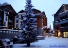 Фото туриста. Новогодняя ель во дворе отеля Sokos Levi