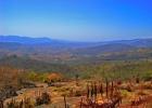 Фото туриста. Земля под названием Свазиленд