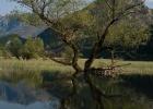 Фото туриста. Скадарское озеро